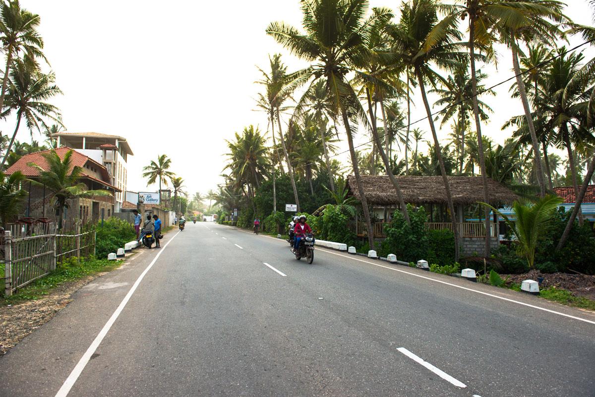 SriLanka2015_troelsiversen-54